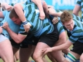 St Gerards v Michaels 2009 Semi Final of Cup Pack